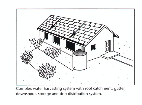 Besides Household Use, Hydroponic Gardens Are The Ideal Way To Begin Using  Your Harvested Rainwater. Hydroponic Plants Grow In Soil Less Systems  Wherein ...