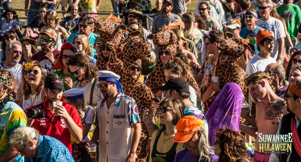 Giraffe Photo from Hulaween's FB